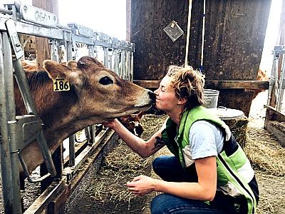 girl kissing cow Picmonkey