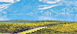 Lake Chelan Wineries: Part I