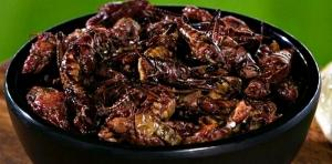 A bowl of chapulines from Edgar's Cantina