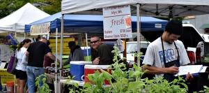 Port Orchard Farmers Market has much to offer