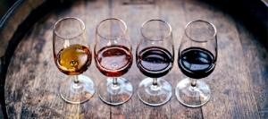 Prof Develops Winery Guidelines